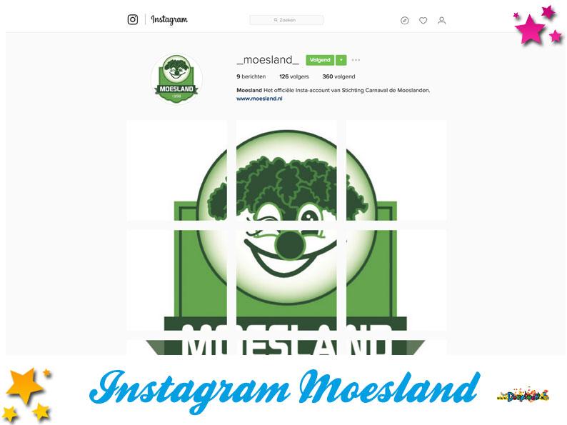Instagram Stichting Carnaval de Moeslanden