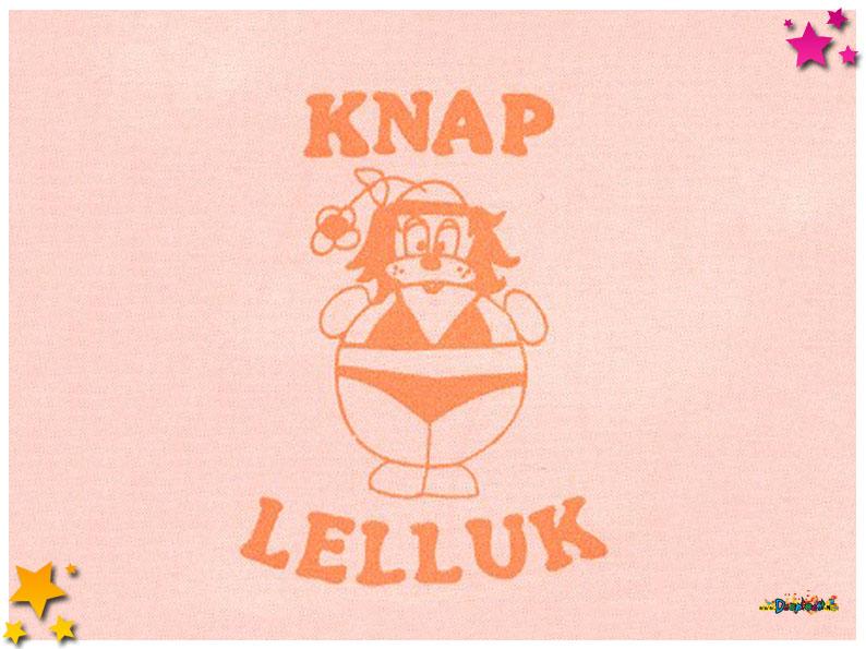 Knap Lelluk - Moesland