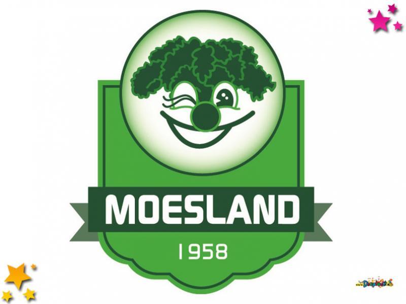 Stichting Carnaval de Moeslanden