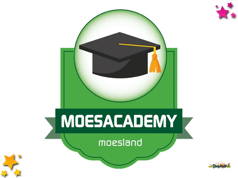Leer bouwen als de beste: Moesacademy Moesland